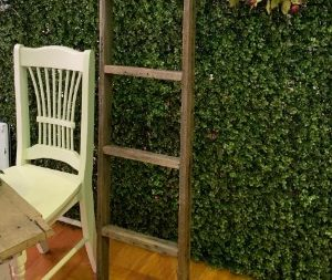 Decorative Walls & Backdrops